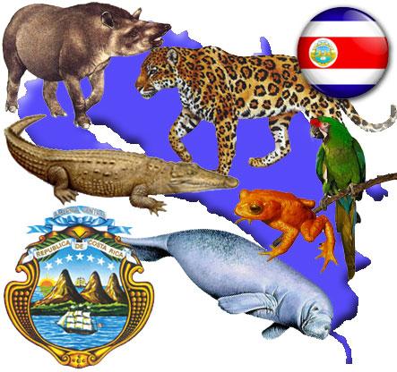 Animales en extinción en Costa Rica