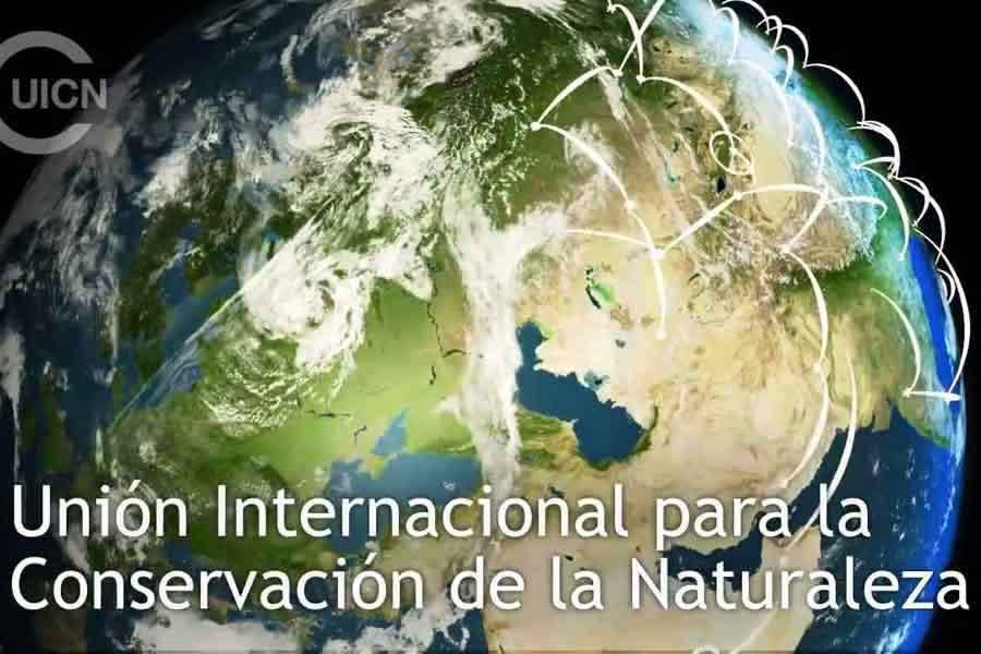 Status UICN - CITES