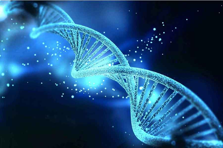 Estructura de ADN