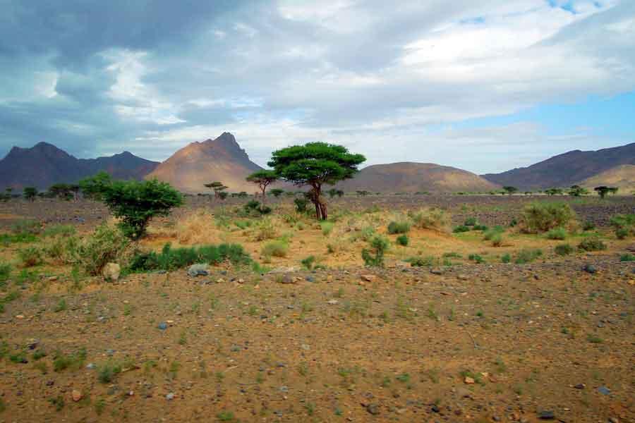 Sahel africano