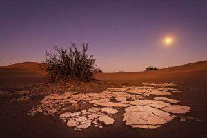 El IPCC y el consenso científico