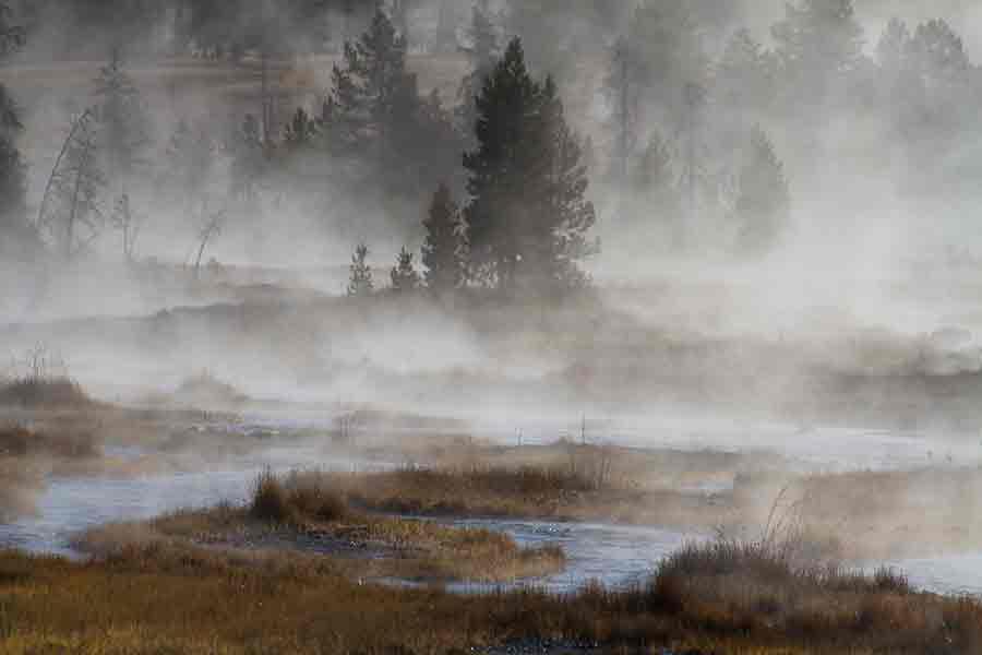 ¿Qué es la retroalimentación del vapor de agua?
