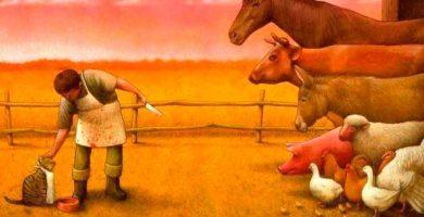 Derechos de otras especies (no humanas)