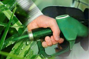 El sinsentido de los biocombustibles